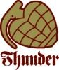 THUNDER.logo