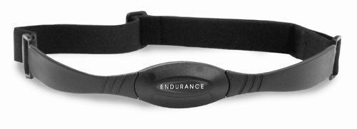 BodySolid Endurance T10HRC Treadmill