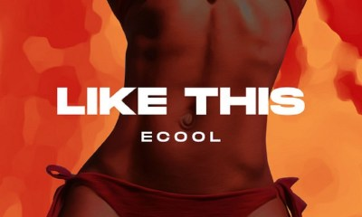 DJ Ecool Like This