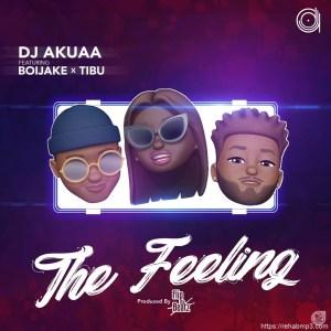 DJ Akuaa - The Feeling Ft. BoiJake, Tibu Mp3 Audio Download