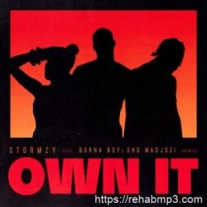 Stormzy ft Burna Boy & Sho Madjozi – Own It (Remix)