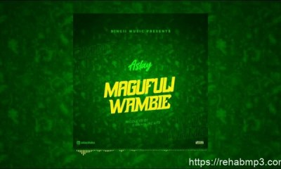 aslay-magufuli-wambie