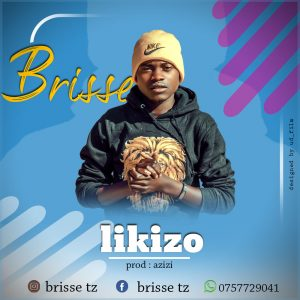 brisse-likizo