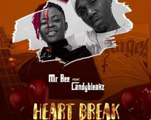 Heart Break Ft. Candy Bleakz
