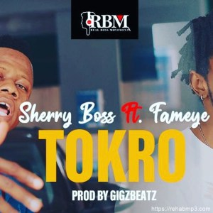 Tokro