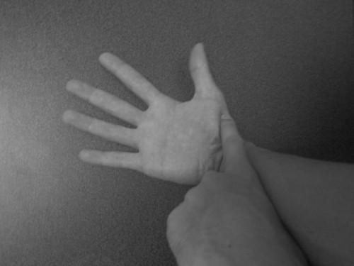 短母指外転筋