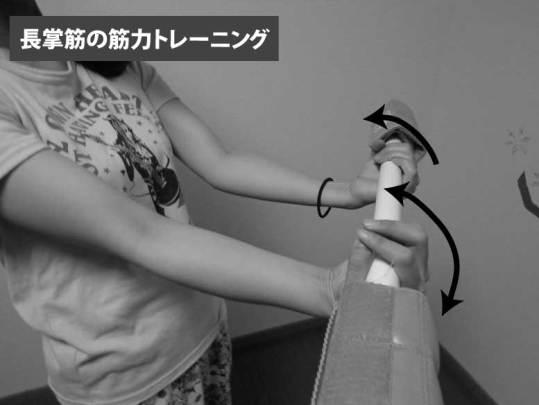 長掌筋の筋力トレーニング