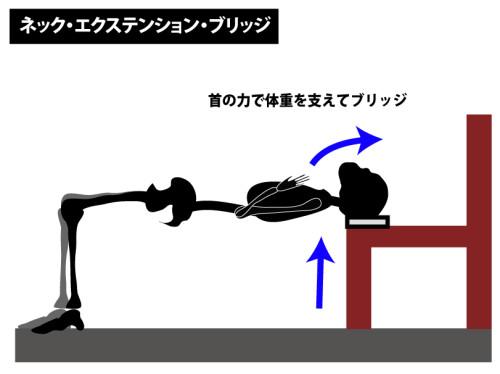筋トレ|ネック・エクステンション・ブリッジ|頸部伸筋群