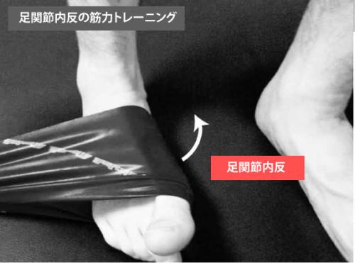 筋トレ|足関節内反