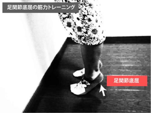 筋トレ|足関節底屈