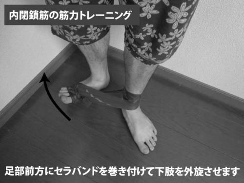 内閉鎖筋の筋力トレーニング