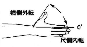 母指尺側内転・撓側外転の関節可動域(正常値)