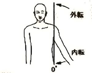肩関節内転・外転の関節可動域(正常値)