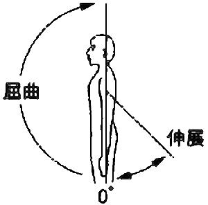 肩関節屈曲・伸展の関節可動域(正常値)