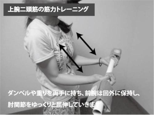 上腕二頭筋の筋力トレーニング