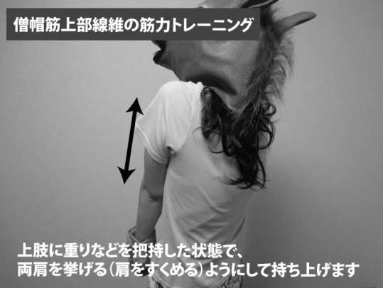 僧帽筋上部線維の筋力トレーニング