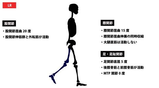 歩行周期|ローディングレスポンス