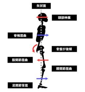 姿勢分析と運動連鎖|矢状面