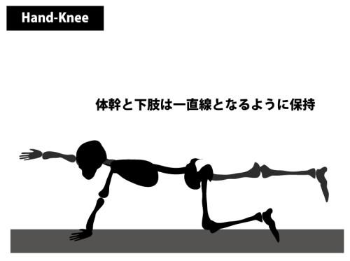 筋トレ|四つ這いバランス運動
