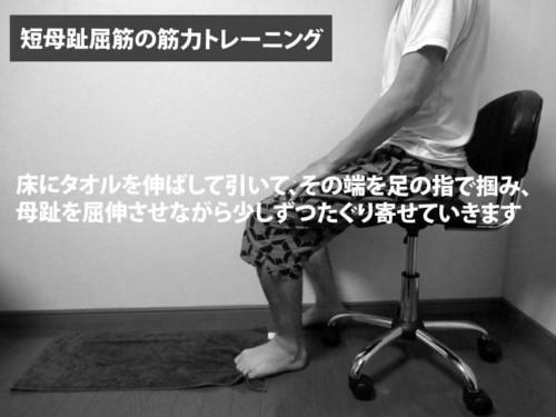 短母趾屈筋の筋力トレーニング