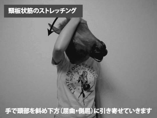 頸板状筋のストレッチング