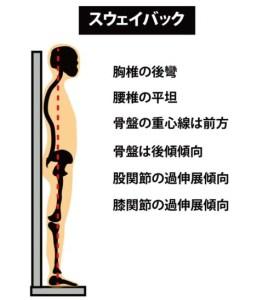 姿勢の分類:スウェイバック1