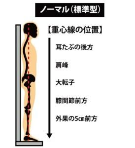 姿勢の分類:ノーマル