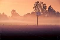Ein Basketballkorb vor herbstlicher Nebelwand