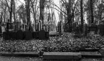 SDIM0074-Juedischer-Friedhof