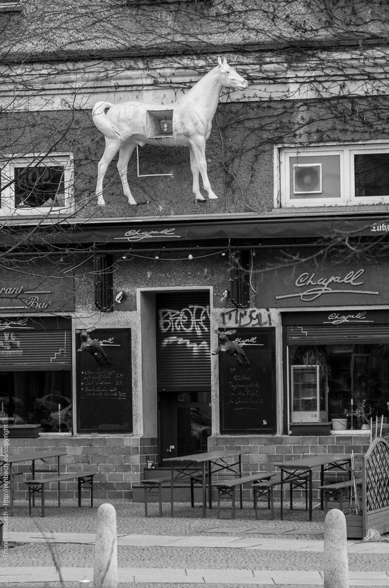 Da hängt ein Pferd an der Wand