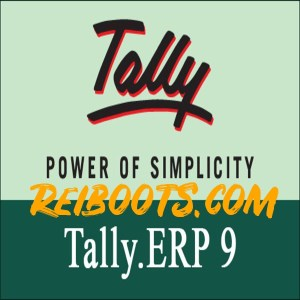 Tally ERP 9 v6.6.3 Crack With Activation Key Free Download