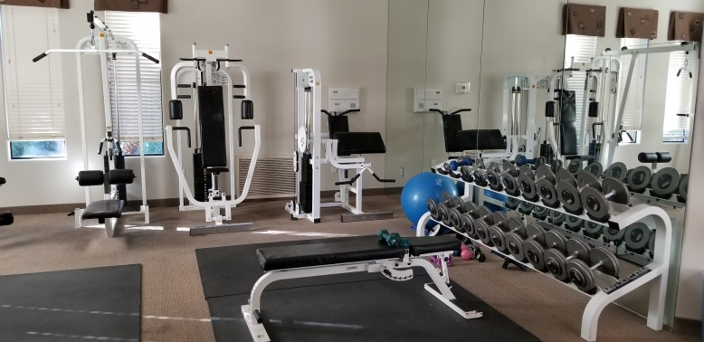 Gym _ Workout Area