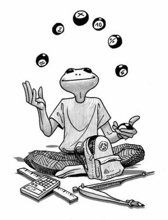 Pidapi V6 : la grenouille des mathématiques