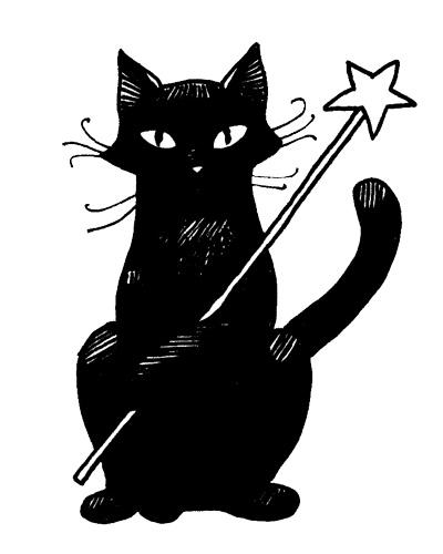 chat noir magique