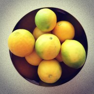 A wonderful friend brought around some home grown lemons