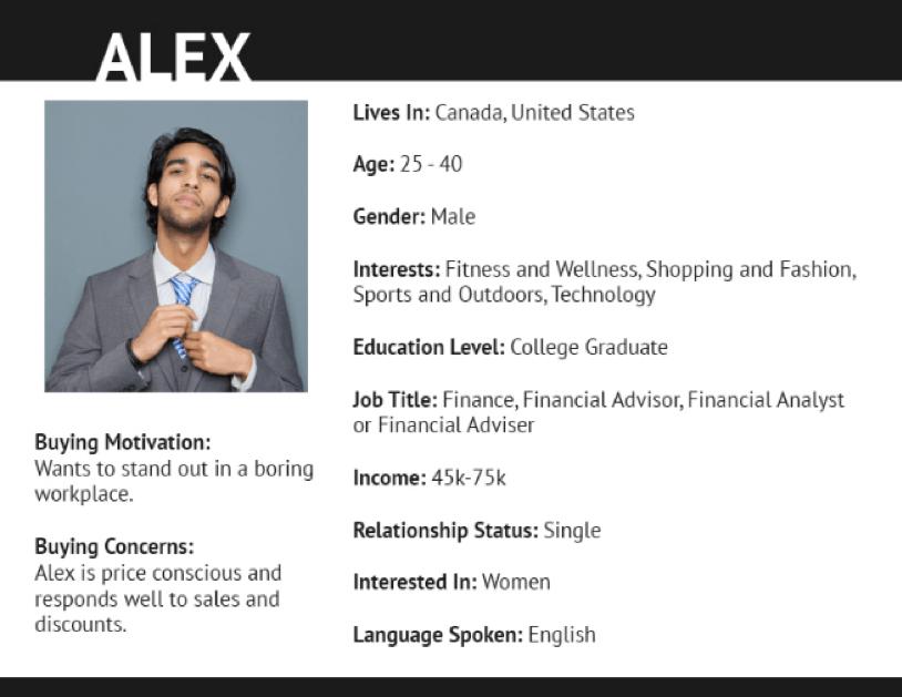 Customer Persona B2C Alex