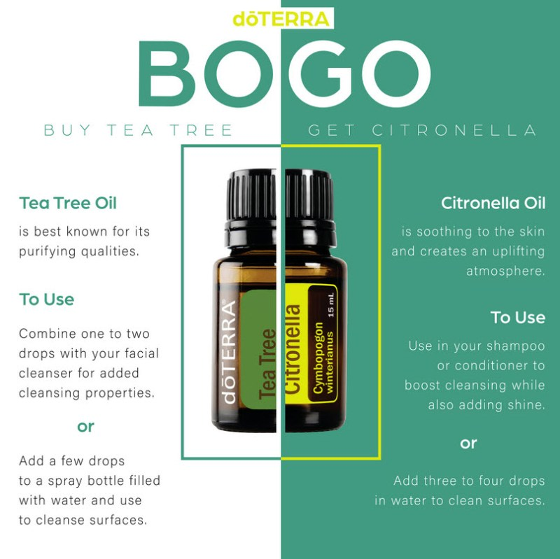 doterra bogo offer tea tree