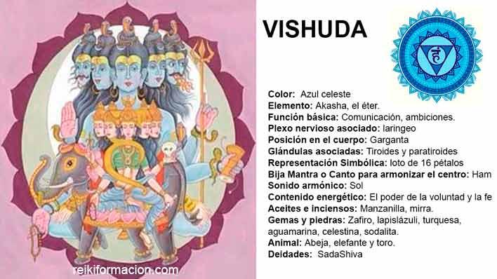 Chacra 5 – VISHUDA