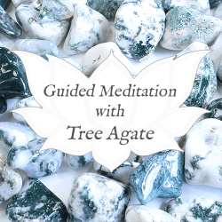 tree agate guided meditation