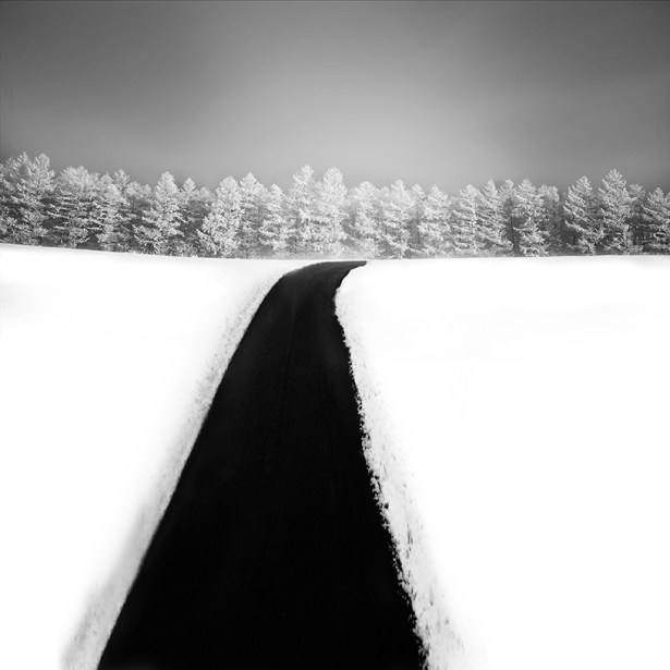 Frozen by Vassilis Tangoulis