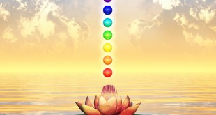 Applications of Reiki
