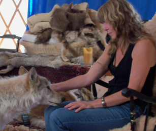 The Connection: Ambassador Cucumber The Timber Wolf And Rose De Dan ©Donna Safely Www.reikishamanic.com
