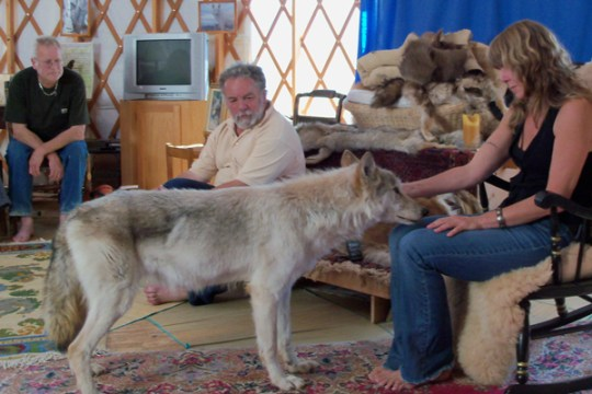 The Connection ©2010 Donna Safely www.reikishamanic.com