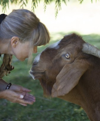 Rose De Dan and Goat Jake at New Moon Farm ©2013 Annie Marie Musselman www.reikishamanic.com