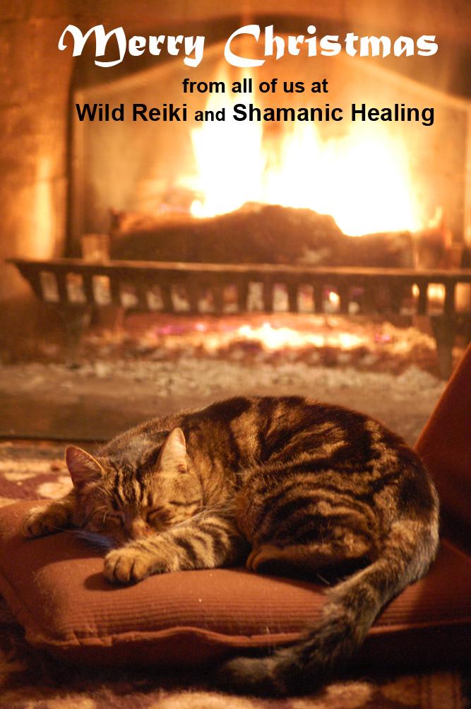 Manitou and the Merry Christmas ©Rose De Dan www.reikishamanic.com