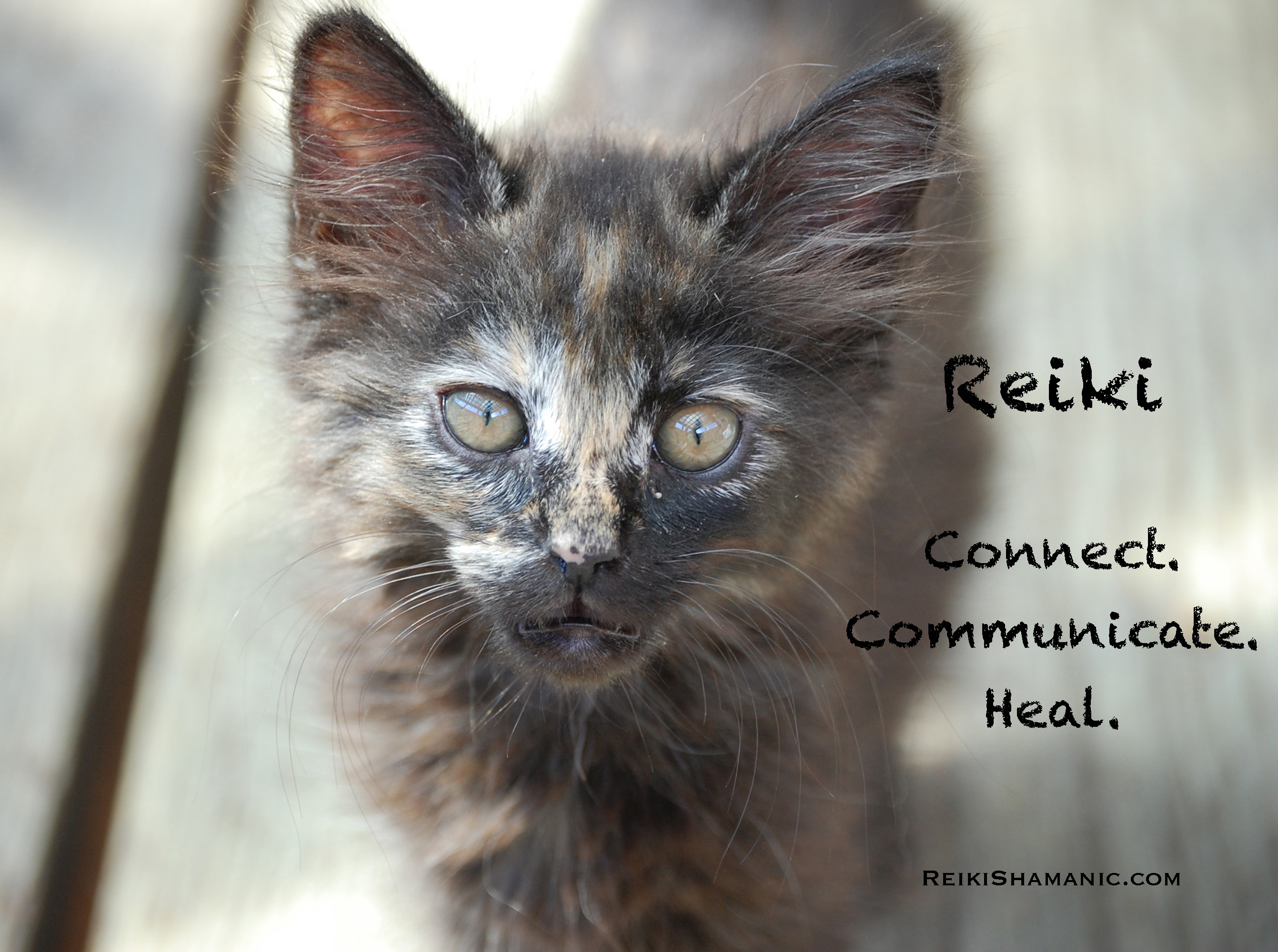 What Is Reiki? Audio