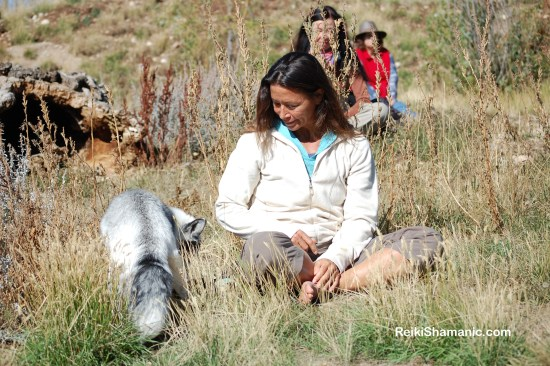 Fox Loki, A Walk on the Wild Side 2016 at Earthfire Institute, ©Rose De Dan www.ReikiShamanic.com