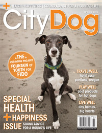 May News: Interviews In City Dog Magazine And Westside Seattle