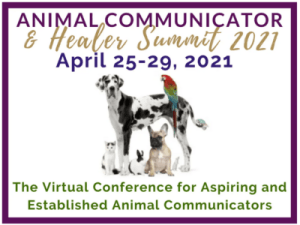 Learn From 30+ Experts At Virtual 2021 Animal Communicator And Healer Summit!
