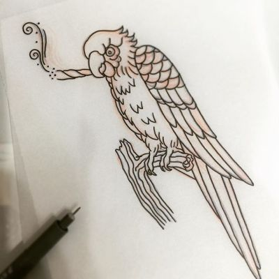 #オウム #デザイン #タトゥー #parrot #sketch #tattoo #design #reikotattoo #studiokeen #japan  #nagoyatattoo #名古屋 #矢場町 #大須